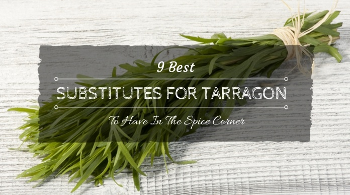substitute for tarragon