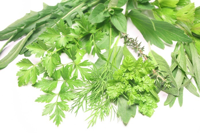 Herbs And Spices That Go Well With Tarragon