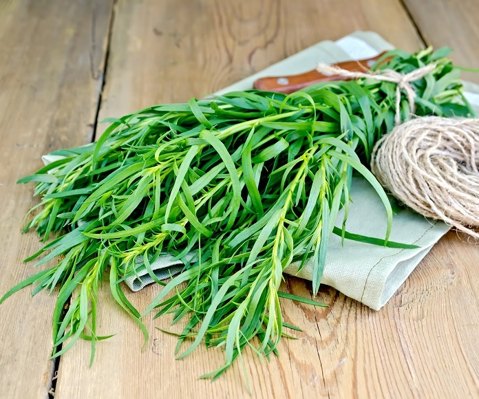 How To Use Tarragon The Right Way