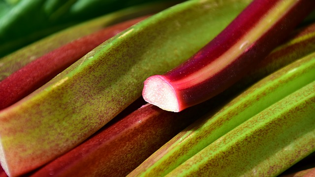 Nutritional Benefits Of Rhubarb