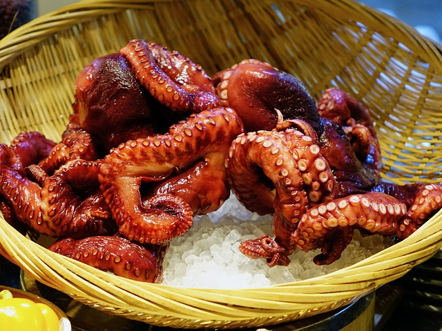 Octopus as a Special Food