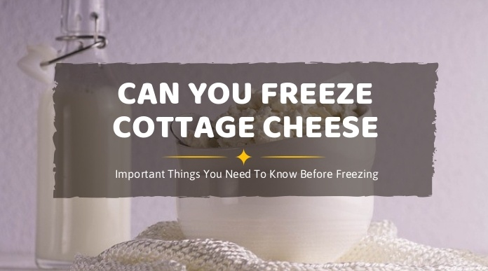 Fabulous Can You Freeze Cottage Cheese Important Things You Need To Interior Design Ideas Tzicisoteloinfo